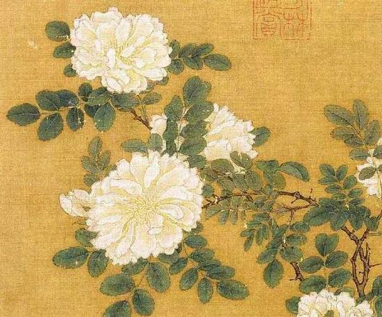 《白蔷薇图页》 宋,马远,绢本设色,26.2cm×25.8cm