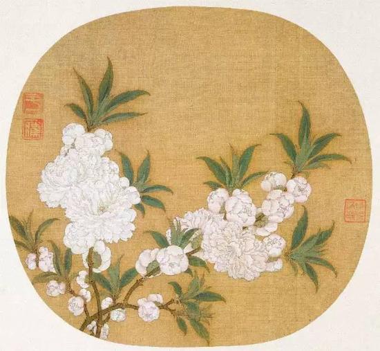 《杏花图》,宋,赵昌,绢本设色,25.2cm×27.3cm