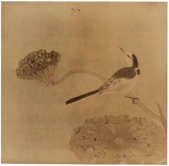 《疏荷沙鸟图页》 宋,绢本设色,纵25cm,横25.6cm