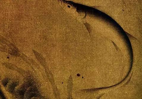 《群鱼戏藻图页》 宋,纨扇页,绢本设色,24.5cm×25.5cm