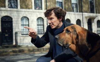 《Sherlock》全新预告片:一睹更精彩刺激的第四季