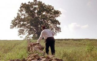 《肖申克的救赎》影迷朝圣地被毁