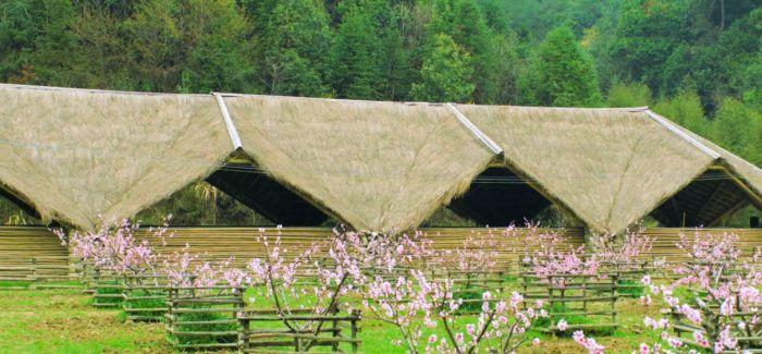 回到美丽乡村:设计师眼中的乡村艺术潜能