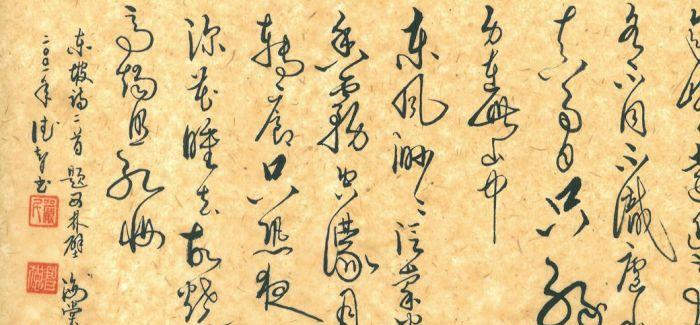 乱写字:苏东坡凭啥弄白字