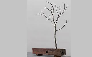 由生活感受自然的生命精神:树枝长凳