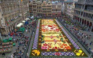 60万朵娇艳编织壮丽花毯   庆祝比日两国交好150年