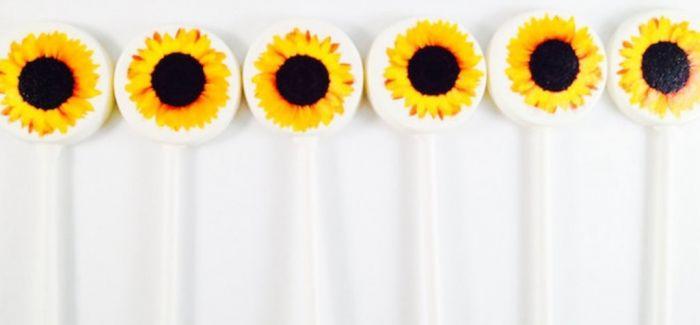 手工制作的棒棒糖融合惊人的图像为可食用的艺术作品