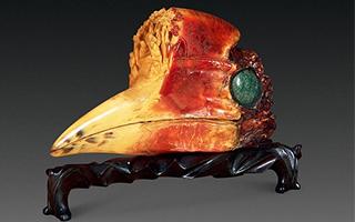 残忍的捕猎者活取盔犀鸟头骨制作工艺品