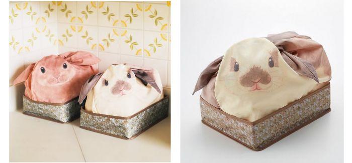如何在家里养兔兔呢
