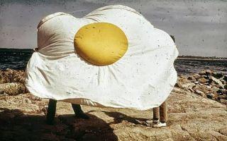 煎蛋是怎样侵占人类生活的?