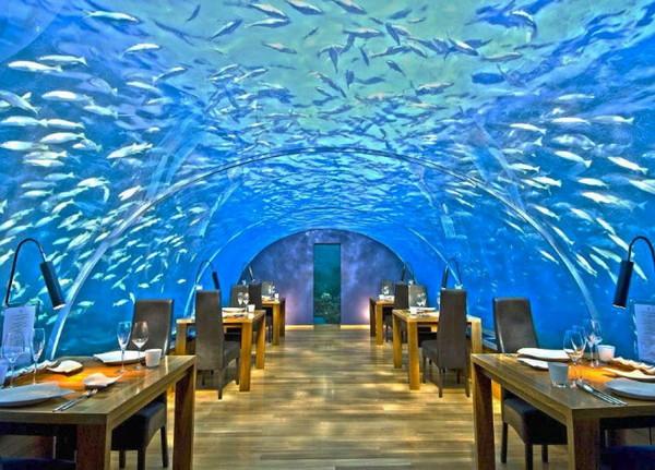 世界唯一全玻璃墙面的透明海底餐厅,Ithaa海底餐厅位于马尔代夫伦格里岛康莱德酒店,拥有180度全景视角,最多可容纳14位客人同时就餐,提供午餐和晚餐;一边享用美食一边观赏海中五彩缤纷的珊瑚美景。 4.Ali Barbour's Cave Restaurant in Diani Beach, Kenya