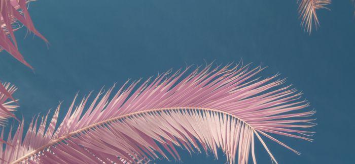 Milan Racmolnar作品:当世界变成粉红色