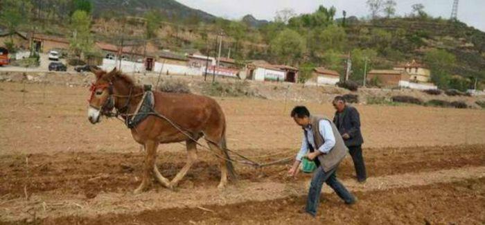 王小帮在山西盂县铜炉村开启了其电商事业的新里程