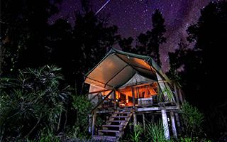 """""""野奢""""正当时:露营酒店让你入住山海丛林"""