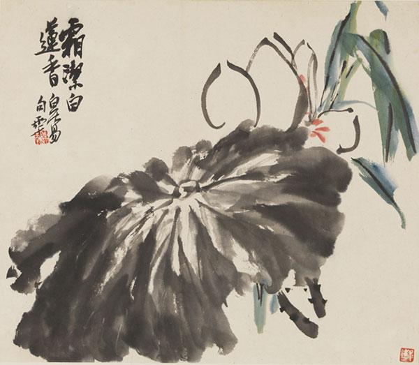 《白莲》 作者:陈半丁  创作年代:1960