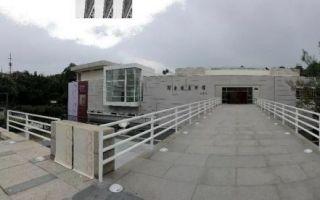 乐正维:从何香凝延展至对同时期艺术的研究——何香凝美术馆重新开馆