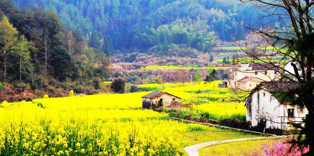 中国最美的10座呼吸小城