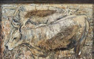 徐梦可:博物馆、中间地带与当代艺术家——从基弗展览风波谈起