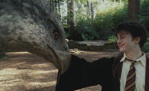 《哈利·波特》的神奇生物与魔法指南