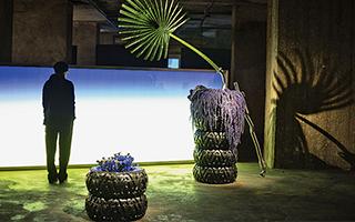 嘉比·尼科波出任第十届柏林双年展策展人
