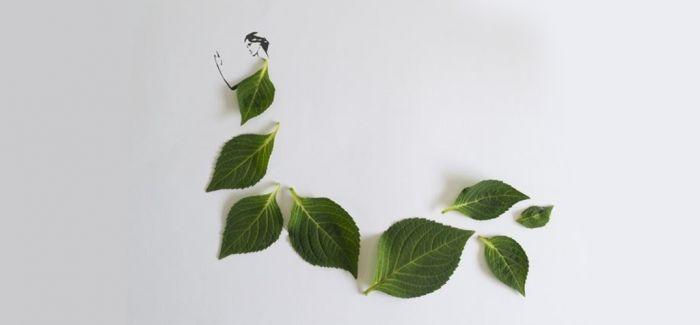 时尚的叶子—Tang Chiew Ling