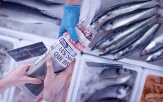 只需一张报纸 就能看清海鱼的新鲜度