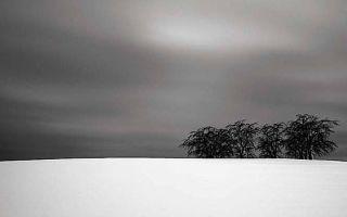 极简的冬天