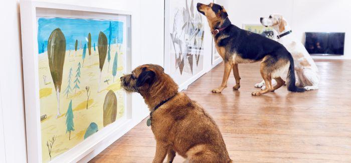 艺术家专门为狗狗们做了一次展览