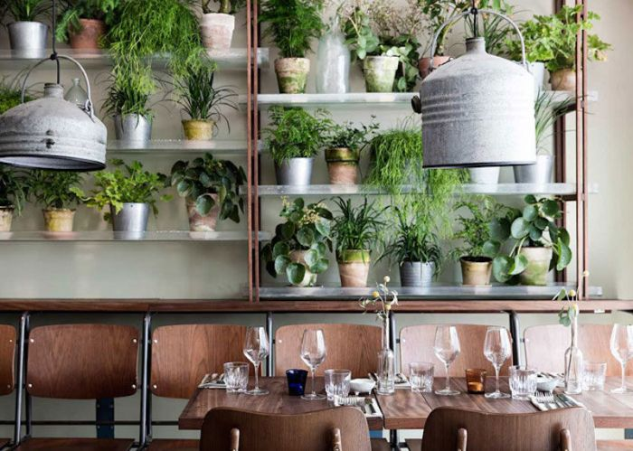 vakst-restaurant-in-copenhagen-is-green-oasis-7