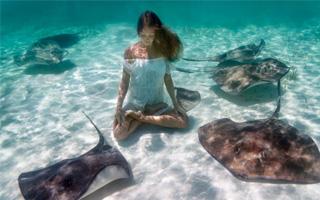 没什么能阻挡瑜伽爱好者 在海底做瑜伽是怎样感受?