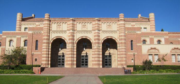 美国大学最佳纯艺术学院排名