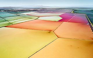 神奇的视觉体验!大自然的色块拼图