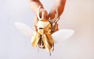 设计师Joop Bource设计的三维昆虫拼插模型玩具
