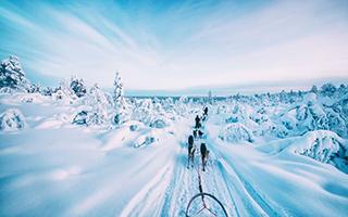 冬季的诗意:摄影师在严寒中捕捉绚丽极光