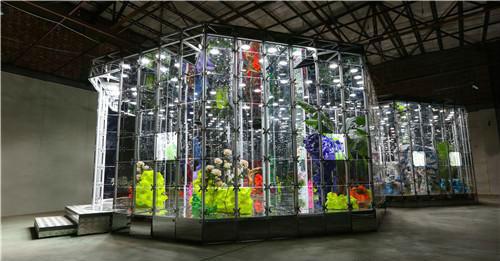 作者:邓国源 作品名称:《诺亚花园Ⅱ》 尺寸:11.562×6.494×3.2m 材质:铝合金钢架、玻璃(镜面)、LED照明灯、半自动旋转门、植物、假山石