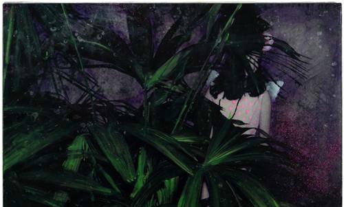 作者:肖丰 作品名称:《童话现实》 尺寸:58×39cm 材质:微喷绘画、环氧树脂、玻璃
