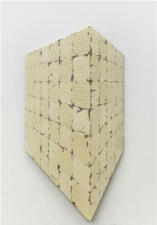 作者:蔡磊 作品名称:《8.82平方米》 尺寸:106×212cm 材质:布面丙烯
