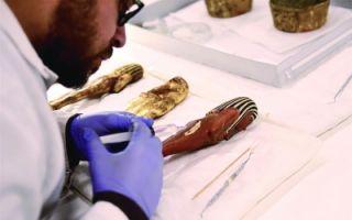 大埃及博物馆2018年对外开放 预计能容纳10万件文物