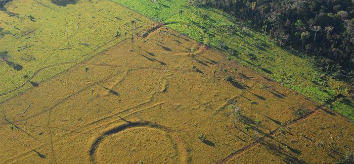 考古发现巴西雨林现巨型图 数百个2000年前巨型图案
