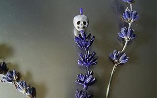 天马行空的珠宝设计 这样的珍珠你敢戴吗?