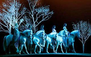 《舞马》升级版下月再来北京