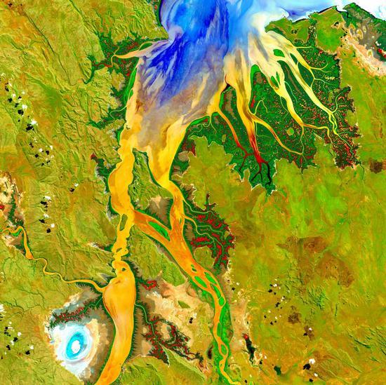 位于澳大利亚西部金伯利高原地区的奥德河河口。深绿色的红树林分布在河两岸,黄色、橘色和蓝色区域则显示河口地区的营养物质流动情况。图中的亮点(左下)是泥滩,咸水鳄的栖息地。