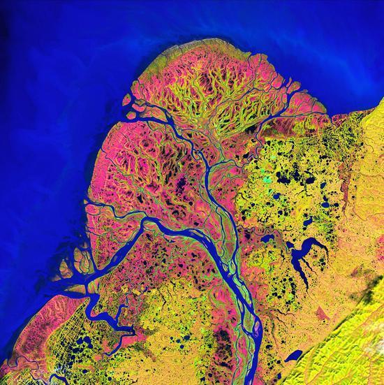 美国阿拉斯加州的育空三角洲是世界上最大的河流三角洲之一,由无数湖泊环绕。育空河发源于加拿大,流经美国阿拉斯加州,最终汇入太平洋最北端的白令海(左上)。