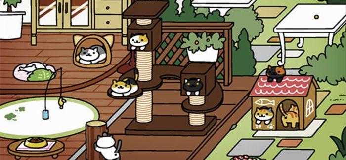 《猫咪后院之家》:一大波卖萌即将袭来
