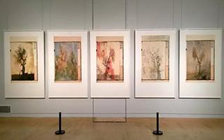 他的作品在各国双年展中展出过
