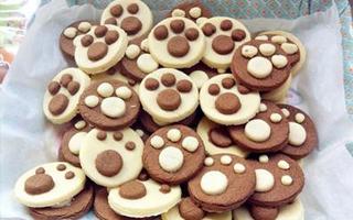 K11   高以翔为你亲身打造的星级课程(三)曲奇饼干DIY创意工坊