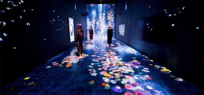 轰动伦敦的数位艺术展