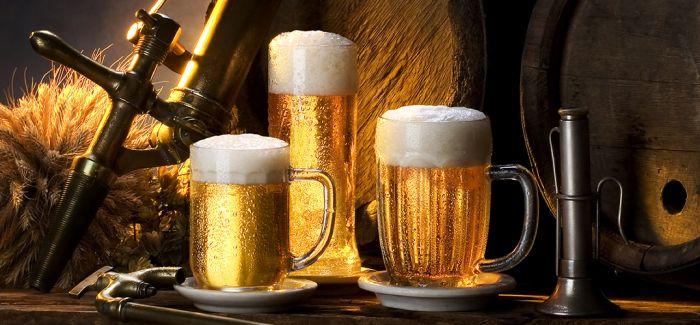 文艺气质的素食啤酒 给素食者一个春天