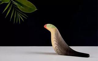 优雅的多彩木鸟