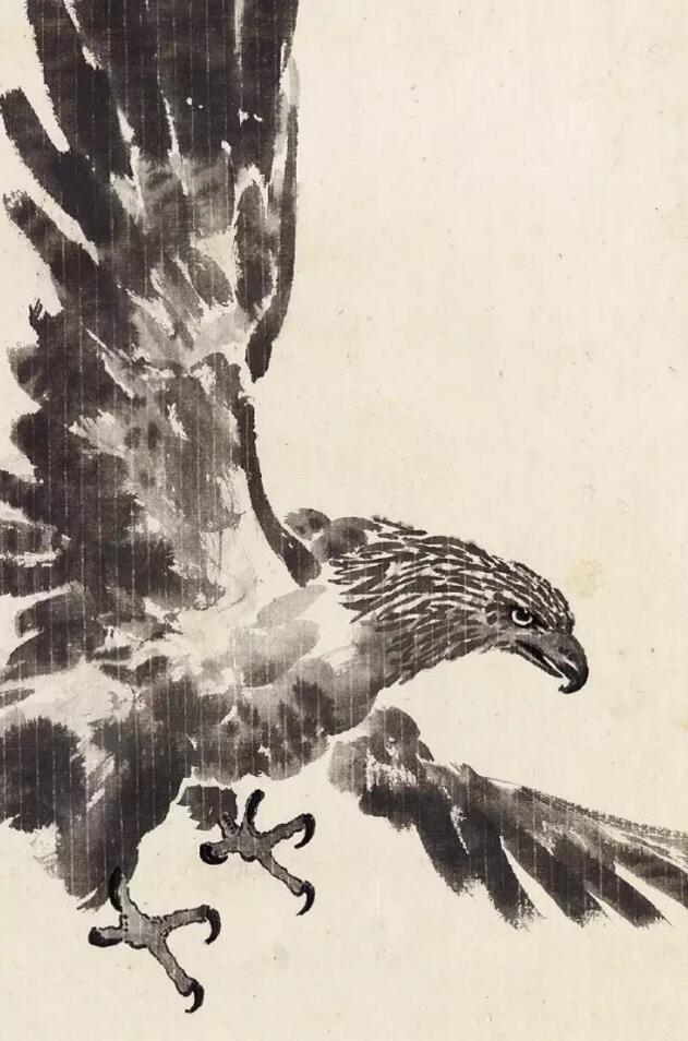 鹰局部 上方一展翅雄鹰,下方则虬曲苍松,整作笔墨精湛,造型准确。画鹰用水墨没骨法,大笔泼写,勾泼结合,鹰的羽毛呈片状,紧密光滑,下颌、胸、腹等呈毛状,运用墨色浓淡干湿,力透纸背;飞羽长而硬,能长时飞行;浓墨及焦墨并用,以显其坚挺。鹰的关键部位,如喙、眼、爪等都一丝不苟。鹰眼目光如炬,侧目之势,益显志翮凌云的英姿,刚健有神,捷锐威猛。鹰是天地间的强者,动可以遨游天宇,静可以栖居山林,是古往今来画家的爱物之一,但是没有多少画家画鹰能如悲鸿先生一般得鹰之神髓,非笔墨之无能,究其原因,是精神里缺乏鹰的敏锐和霸气